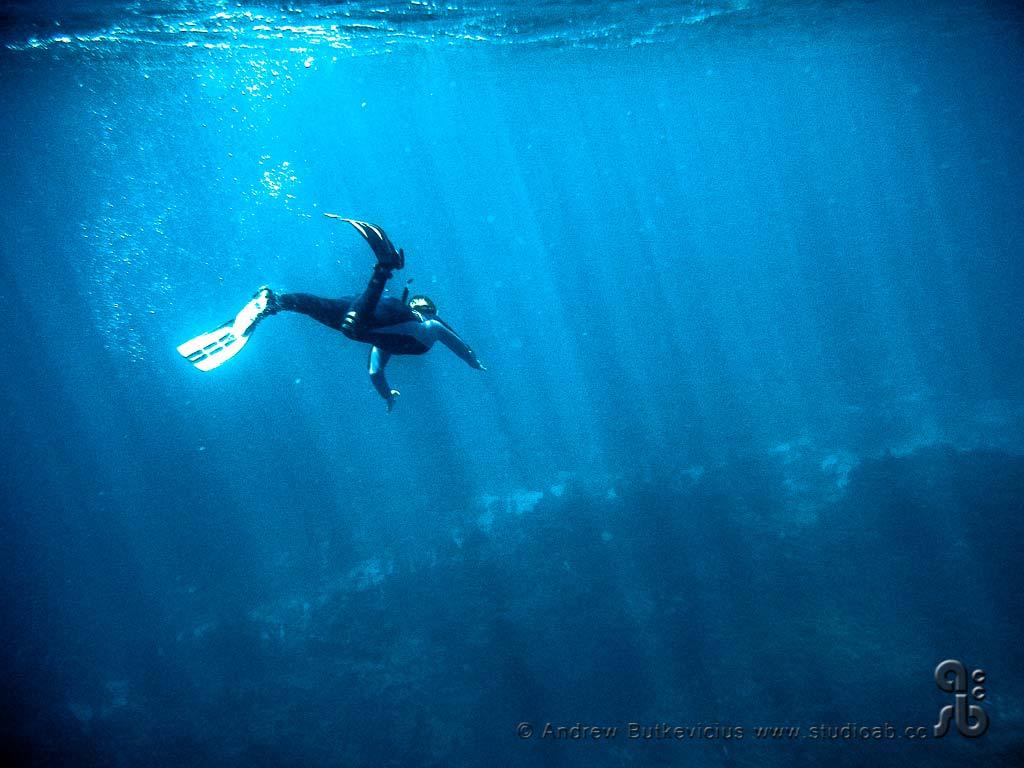 ab_Underwater-17