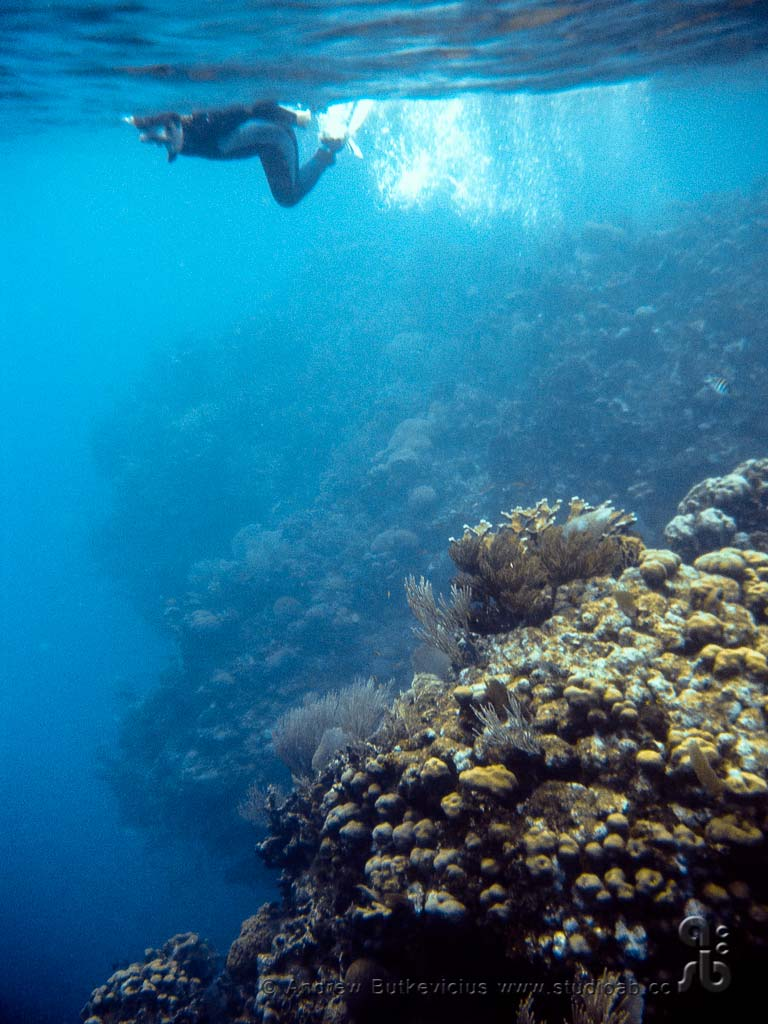 ab_Underwater-18