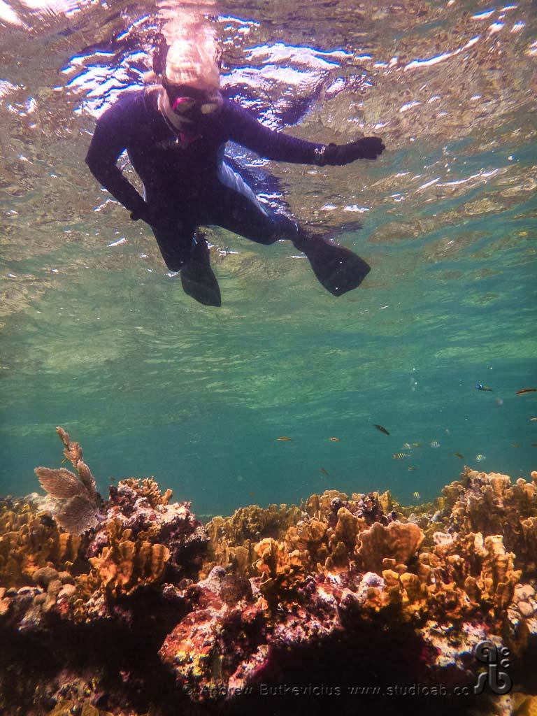 ab_Underwater-30