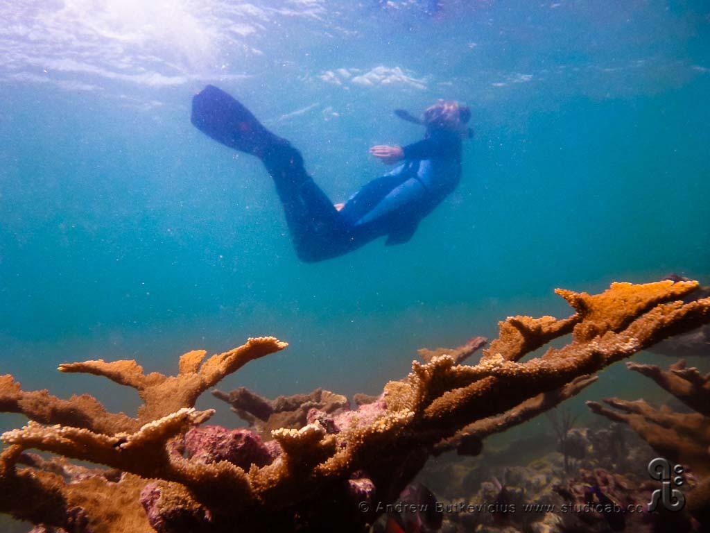 ab_Underwater-32