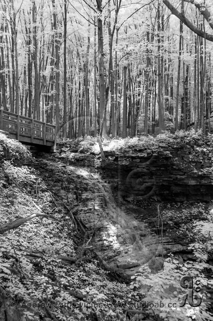 Cranbrook Falls
